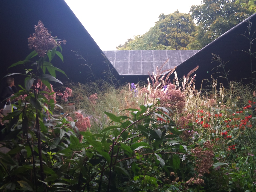 Piet Oudolf's garden at the Serpentine Gallery pavilion London (1/6)