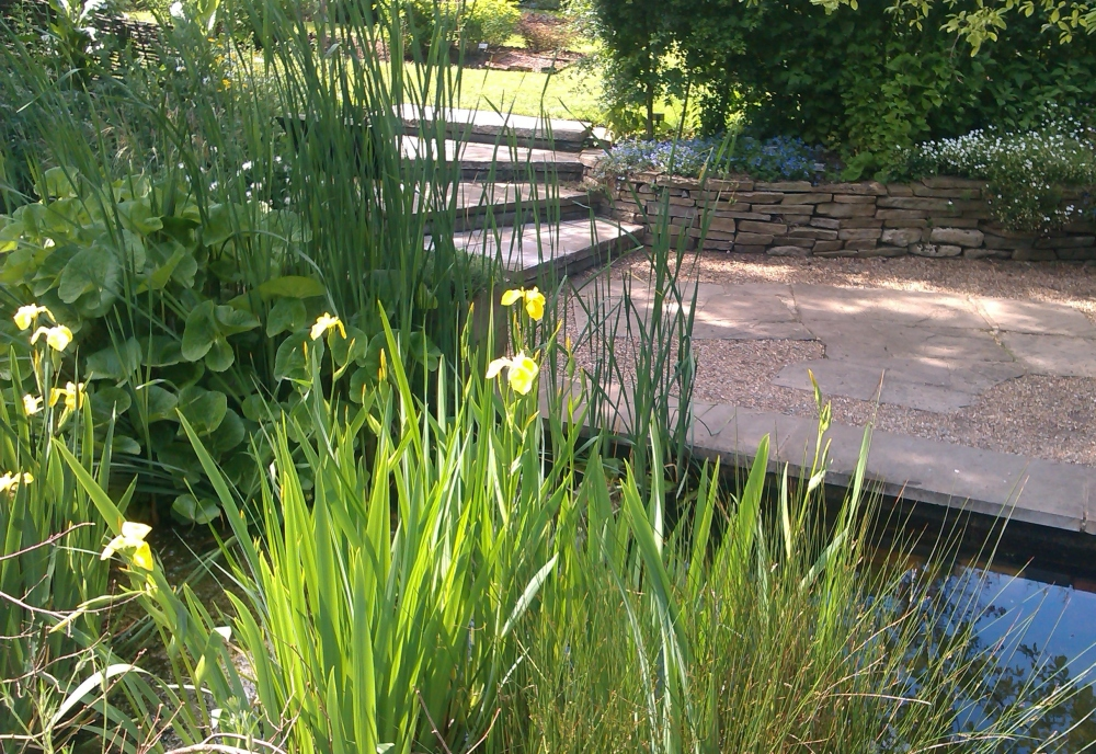 Chelsea Physic Garden: A gem in the heart of London (4/6)
